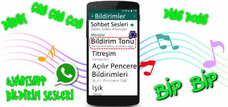 whatsapp bildirim sesleri